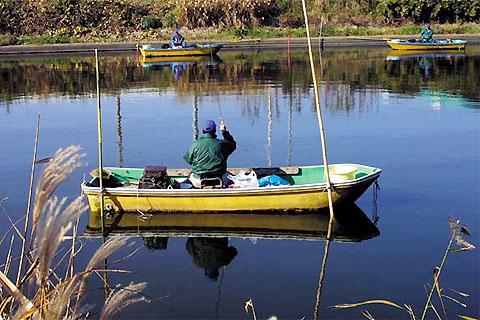水郷賛歌の差し込み写真(横利根川)